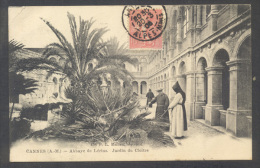 06 - Cannes - Abbaye De Lérins - Jardin Du Cloitre - 26843** - Cannes
