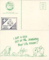 USA 1977 SCOUTING POSTCARD - Scouting