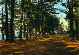 CPSM  Ile Berder Etablissement Saint-Joseph ST 2884 - Larmor-Plage
