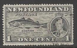 1937 1 Cent, Codfish, Used - Newfoundland