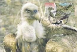 164. ISRAEL - Carte Maximum Card - ATM AMIEL - Gyps Fulvus / Griffon Vulture / Vautour Fauve - Bird, Oiseau - Maximumkarten