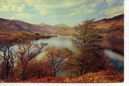 INVERNESS  - Loch Lomond Near  Ardlui - By W S Thomson  M175 - Inverness-shire