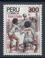 130604972  PERU  YVERT  Nº  891 - Peru