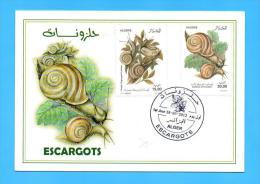 Algérie Algeria FDC Card Carte Premier Jour Snails Snail Escargot Escargots Coquillages Shells 2012 - Conchiglie