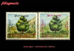 ASIA. IRAK MINT. 1965 SEMANA DEL ÁRBOL - Iraq