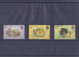 Vie Marine Du Belize - Belize (1973-...)