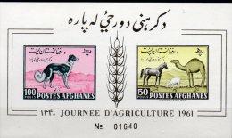 Landwirtschaft 1961 Afghanistan Block 8 B ** 10€ Imperf. Windhund Pferd Schaf Dromedar Horse Bloc Sheet Bf Afghanes - Afghanistan