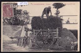 Cochinchine : Saïgon - Marchand D'herbe Et Ses Enfants - Char - Timbre Indochine Française Ca 1904 (12´776) - Viêt-Nam