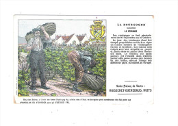 Nuits Saint Georges 21 - La Vendange - Publicité Pantalon Du Vigneron Moissenet Guenebaud - 1908 - Nuits Saint Georges