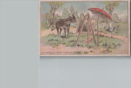 Chromo JOSEPH MONTELLIER Izieux   Un Critique D'art Médusé (âne Devant Un Tableau) - Scans Recto/verso - Chromos