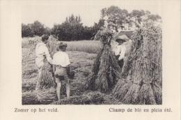 Kaartje Chromo (6x9cm) Zomer Op Het Veld Champ De Blé En Plein été Uitgave: Van Melle Gent - Vieux Papiers