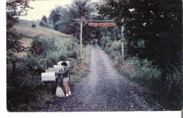 Cedar Lodge Camp, Entrance Road And Rural Mail Boxes, Lake Massawippi, Ayers Cliff, Quebec - Other