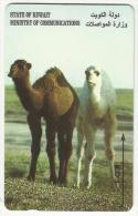 Kuwait Used Phonecard Ministry Of Communication  Tele Telephone Camel - Koweït