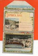 Souvenir Folder Of JAMAICA , B.W.I. - 22 Cpa (en L'état) - Jamaïque