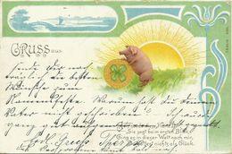 AK Glückwunsch Schweinchen Rollt Klettblatt-Münze Color 1901 #01 - Anniversaire