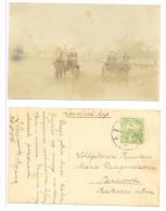 ARAD Year 1916 - Romania