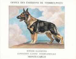 PLAQUETTE POUR EDITION DE TIMBRE MONACO CHIEN BERGER ALLEMAND EXPOSITION CANINE MONTE CARLO - Francobolli