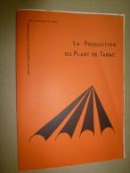 La Production Du PLANT De TABAC   Document édifié Avec La Collaboration étroite De :  La SEITA - Garden
