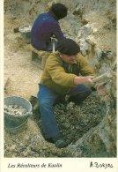 METIER  LES RECOLTEURS DE KAOLIN  LE BUISSON 24 FORET DE LA BESSEDE PHOTO A. BORDES  REF 88PH016 - Mijnen