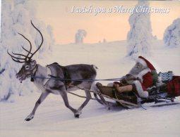 (124) Reindeer & Fatehr Christmas - Eland And Pere Noel - Scandinavia - Zonder Classificatie