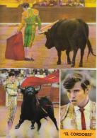 Lot Of 5 Toreros Toreador - Bull Bulfight - El Cordobes - VG Condition - All 5 Scans - 5 - 99 Postcards