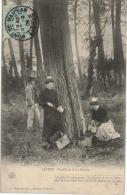 Carte Postale Ancienne D´une Cueillette De La Résine - Non Classés