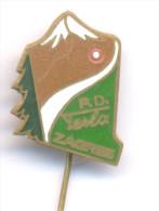 TESLA / CLIMBING MOUNTAINEERING ALPINISM , TESLA CLUB - ZAGREB, RARE PIN BADGE FROM 1973. THEIR FIRST PIN! - Alpinism, Mountaineering