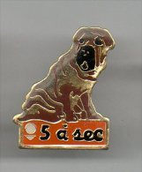 PINS PIN'S ANIMAL CHIEN DE CHASSE 5 A SEC PRESSING EPOXY - Animaux