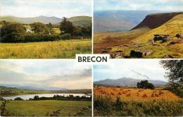F-13-0976  :   Brecon  The Beacons From Merthyr Road - Breconshire