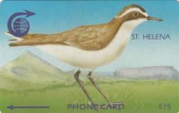 ST. HELENA ISL.(GPT) - Wirebird, CN : 3CSHC, Tirage 2000, Used - St. Helena Island