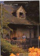 Culture..Séchage Du Millet à Balai..animée..Beaufort-en-Vallée - Cultures