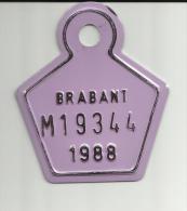 Plaque Vélomoteur Brabant 1988 - Plaques D'immatriculation