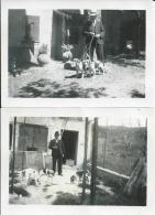 39Gm   83 Villecroze Bletonnet Lot De 2 Photos De 1939 Chiens De Chasse - Frankrijk