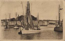 Concarneau - Thonier A991 Au Port - CPA - Bateau/ship/schiff - Fishing Boats