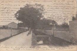 21 BEAUNE Belle  Promenade De L' AIGUE Route Bordée D' ARBRES Bord D' EAU 1904 - Beaune