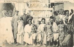 GUINEE FRANCAISE - CONAKRY  - UN FANAL MINUMENTAL - ARBRE DE NOEL INDIGENE - Guinée Française