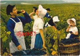 51 - Les Environs De REIMS - Vendanges En Champagne à AMBONNAY - 1976 (Enfants Mangeant Du Raisin) - Viñedos