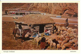 Navajo Indians - Arizona - Navajo Family With Their Sheep In Front Of The Hogan - Indiens De L'Amerique Du Nord