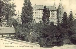 CPA MONTBELIARD 25, Le Château, Vu Des Fossés - Montbéliard