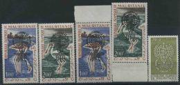 1962 Mauritania, Lotta Alla Malaria Paludisme, Serie Completa Nuova (**) - Mauritania (1960-...)