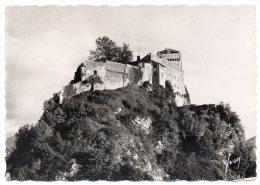 CP, 65, LOURDES, Le Château-Fort, Vierge - Lourdes