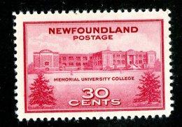 2464x)  Newfoundland 1943 - SG # 290  Mint*  ( Catalogue £1.50 ) - Newfoundland