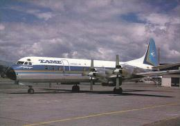 Tame Lockheed L 188A Electra HC AZY Cn 1052 Quito Mariscal Sucre Avril 1988 - 1946-....: Moderne