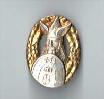 INSIGNE 134° RI REGIMENT INFANTERIE -  DRAGO PARIS - Armée De Terre
