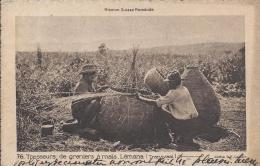 8018 - Tresseurs De Greniers à Maïs Lémana (Transvaal) Mission Suisse Romande - Artisanat