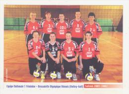 VOLLEY-BALL - CPM - EQUIPE NATIONALE 1 FEMININE BROSSOLETTE OLYMPIQUE REMOIS - SAISON 2011/2002 - CPM ANIMEE - Volleyball