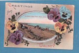 GREETING SFROM WALNEY BEACH BIGGAR BANK WALNEY ISLAND - Cumberland/ Westmorland