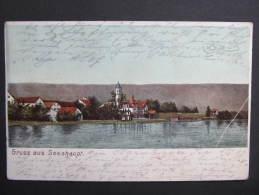 AK SEESHAUPT 1902 //  D*8727 - Deutschland