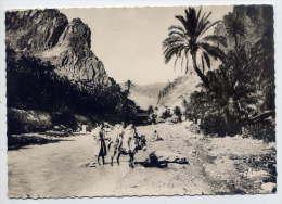Algérie--Scènes Et Types--La Porte Du Désert (âne) ,cpsm 10 X 15 N° 1292  éd CAP - Algérie