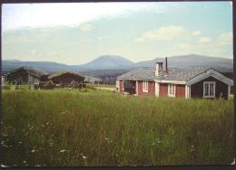 Norge, Norwegen, Norway, Parti Fra Lomsesetrene Ved Peer Gyntvegen, Nachgebühr, T, Nice Stamp, Used, 3 Scans - Noruega